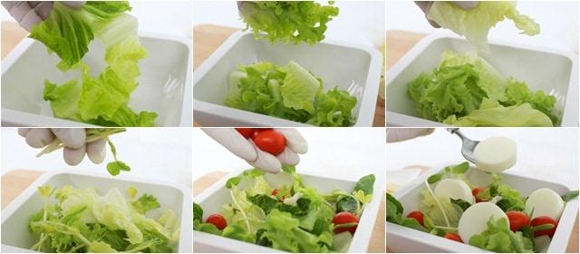สลัดไข่ขาว(Egg White salad)
