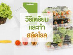 วิธีเตรียมและทำสลัดโรล (How to make salad rolls)